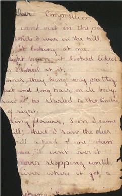 opal whiteley diary fragment oregon dorena