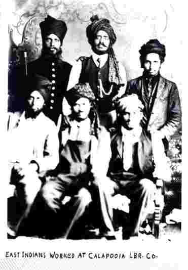 sikh and hindus in Oregon at lumber mill