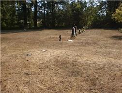 asian men graves mabel cemetery oregon